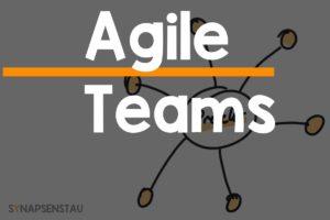 Agiles Team