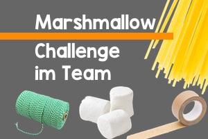 Marshmallow Challenge Team